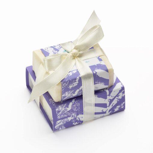 Hair Care Gift Duo - Orange & Lavender
